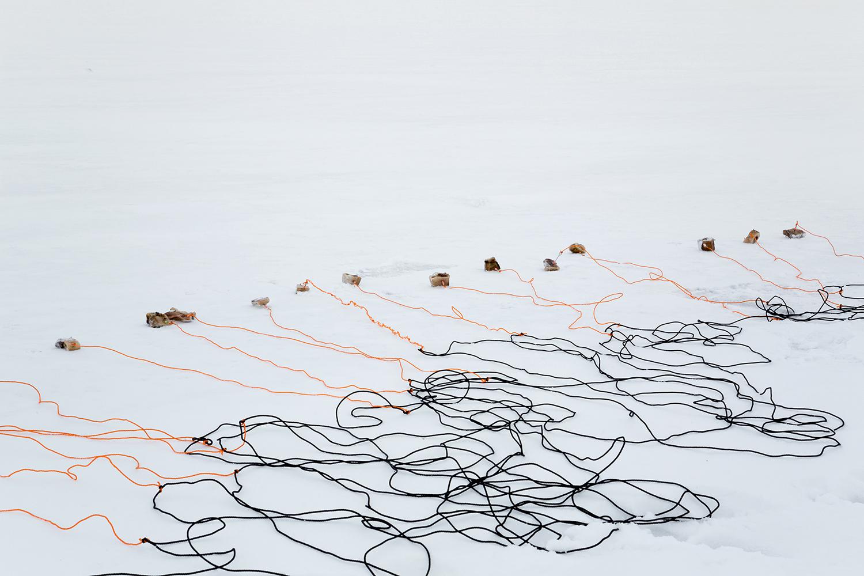 Fishing net and apts